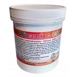 Winamix - Go
