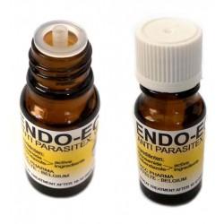 ENDO & ECTO żółte